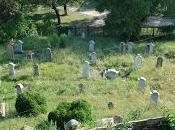 Viscri villaggio della Transilvania dimenticare tradizioni