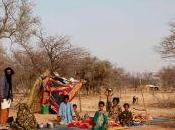 Ricordi viaggio Tuareg Sahel parte seconda