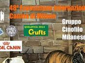 Esposizione Internazionale Canina 2013