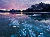 Abraham Lake spettacolari bolle ghiaccio