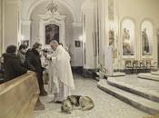 Ciccio, cane aspetta chiesa padrona morta mesi fa...