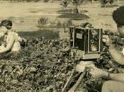 raccolta documentari viaggi secolo scorso: Travel Film Archive