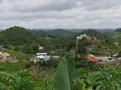 Alla scoperta della Giamaica Marley