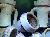 Archeologia subacquea. Relitti sommersi
