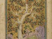 Mughal India: Art, Culture Empire alla British Library