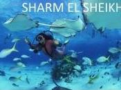 Flyplanet porta Sharm Sheikh €99,99
