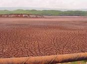 Terre rare fanghi rossi della Giamaica