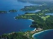 Grillo Costa Rica, qualcosa torna