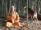 Video documentario forza fisica spirituale Monaci Shaolin millenni hanno un'alimentazione vegetariana vegana