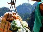 Genuino Clandestino, cibo Italia poco scherzare