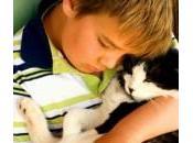 Attenti cane. criceto, furetto, gatto… Impennata allergie bambini