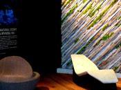 Elena Santoro Fuorisalone 2013 Milano Design Week: FROTTAGE NATURAL STORY Spazio Material ConneXion, Triennale