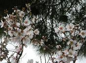 Week Aprile Maggio, qualche idea primavera