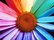 colori dipingere