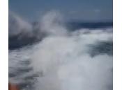 Messico, orche saltano sulla scia motoscafo (video)