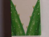 Review: crema colorata planter's naturaviva