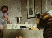 caro...c'è tigre bagno! Donna rivive dramma Gullotta
