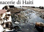 macerie Haiti: libro sulla rivista Punto d'Incontro México
