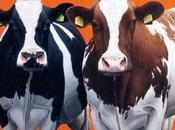 mercato delle vacche (politicizzate)