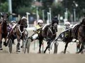 Ippica: altra settimana corse Vinovo, inizia domani