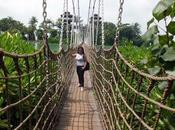 Viaggi Indonesia: Singapore ponte legno