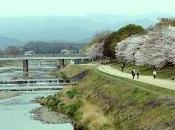 Cose Kyoto Kamogawa