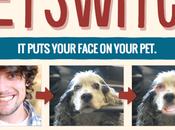 Creare fotomontaggi semplici veloci Petswitch