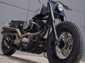 illogical softail