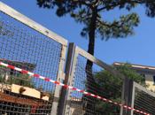 Napoli chiusa alberi