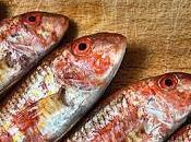 Pescare idee triglie)