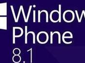 Windows Phone Mostrato Video