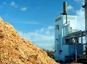 L'incredibile successo delle bioenergie Svezia