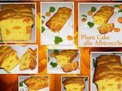 Plum cake alle albicocche