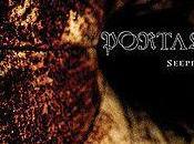 """Portal """"Seepia"""""""