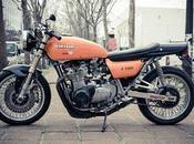 Kawasaki Z1000 Raspo Concept