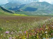 """Oasi pace Umbria: Norcia Castelluccio, """"Tibet d'Italia"""""""