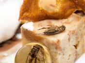 Vermi insetti menù: l'Alternative Food