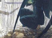 Carlos Schwabe, simbolismo naturalismo