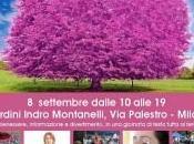 Milano: settembre, Domenica delle Donne