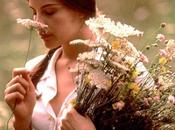 Stealing beauty Bernardo Bertolucci