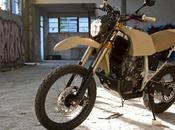 Readers rides: Whisky Throttle