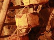 Tartine Occelli barolo fichi Cutney Mango.
