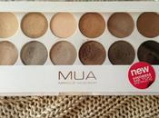 Review Undress palette (dupe Naked
