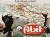 ABIT Grugliasco (TO)
