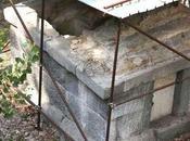 Osceno- scavi Pompei venduti all'asta