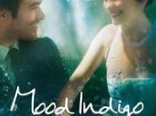 Fragola cinema: Mood Indigo schiuma giorni