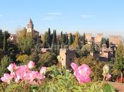 Granada L'Alhambra (seconda parte)