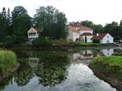 Fuga nella natura Estonia