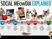 Finalmente! Social Media Spiegati pubblico modo efficace