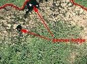 Castori canadesi costruiscono diga visibile dallo spazio